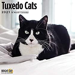 2021 Tuxedo Cats Wall Calendar