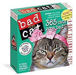 Bad Cat Page-A-Day Calendar 2021 Calendar