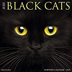Just Black Cats 2021 Wall Calendar