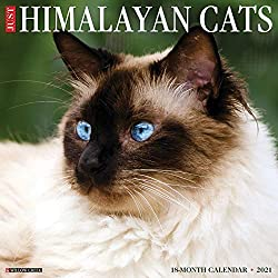 Just Himalayan Cats 2021 Wall Calendar