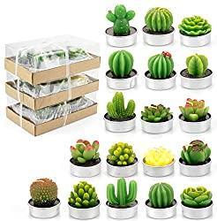 18 Pack Cactus Tealight Candles
