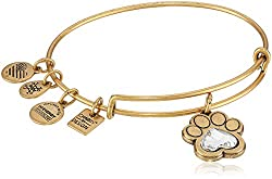 Alex and Ani Prints of Love Expandable Bangle Bracelet