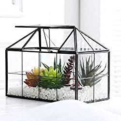 House Shape Geometric Succulent Terrarium with Swing Lid