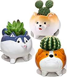 Puppy Succulent Planters