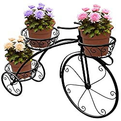 Tricycle Plant Stand Parisian Style (Black)
